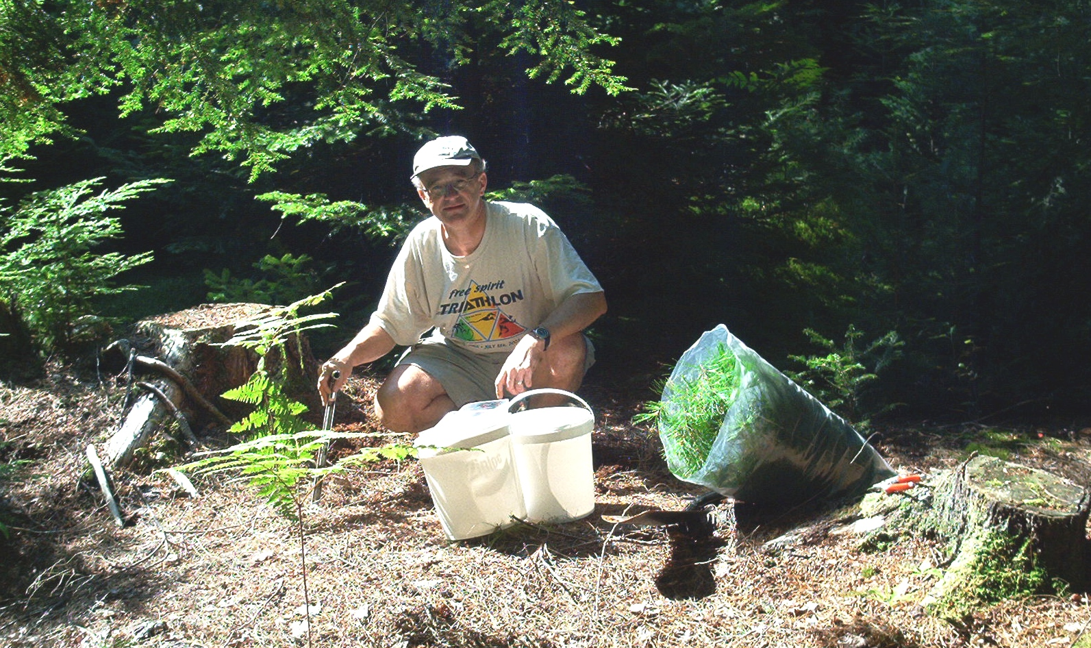 Steve Sheppard sampling vegetation and soils in Nova Scotia.
